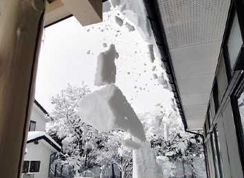 風・雹・雪災