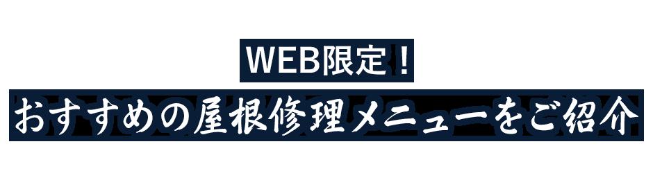 WEB限定おすすめの屋根修理メニューをご紹介